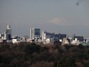 ホテルニューオータニの禅の部屋から見える富士山